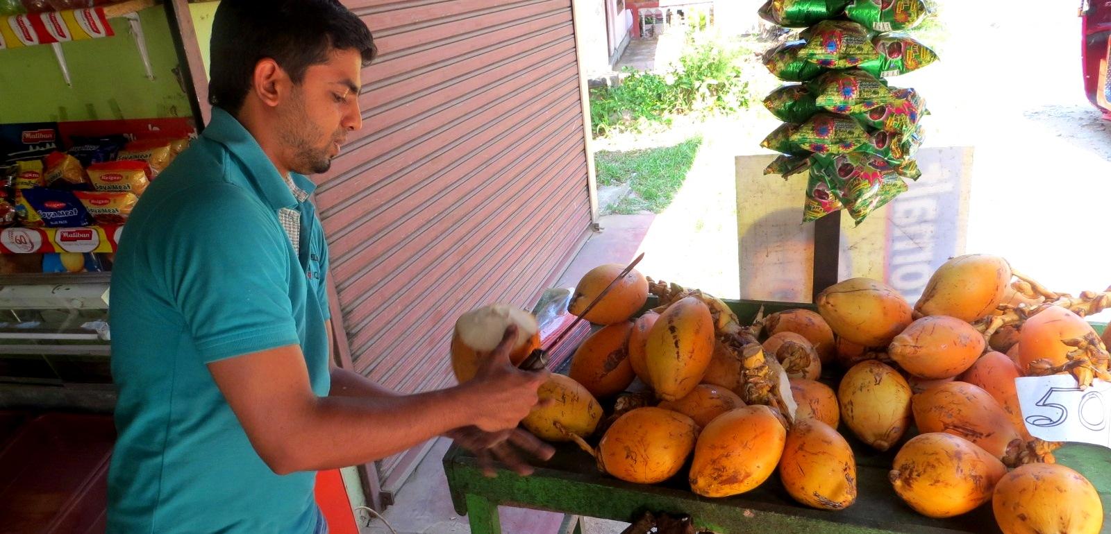 king-coconut-koenigskokosnuss-sri-lanka-kandy