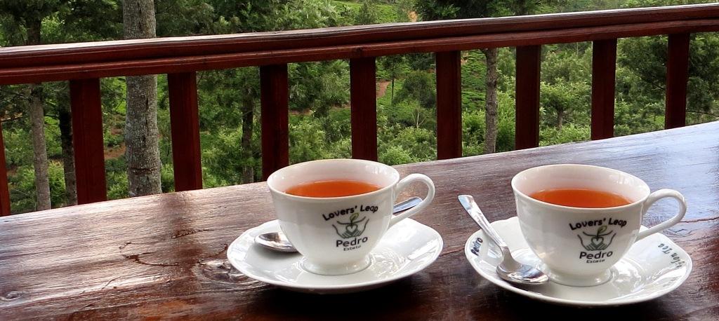 tee-ceylontea-teeplantage-teefabrik-sri-lanka
