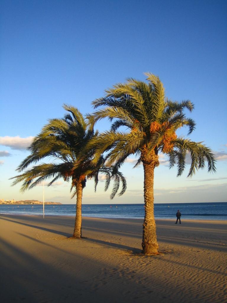 Alicante-Strand (1).JPG